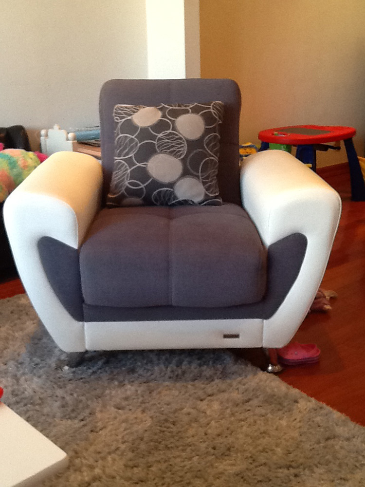 Armchair Novato Upholstery Cleaning ...