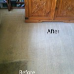 Bedroom-Carpet-Cleaning-Novato