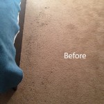 Bedroom-Carpet-Cleaning-Novato-A