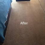 Bedroom-Carpet-Cleaning-Novato-B