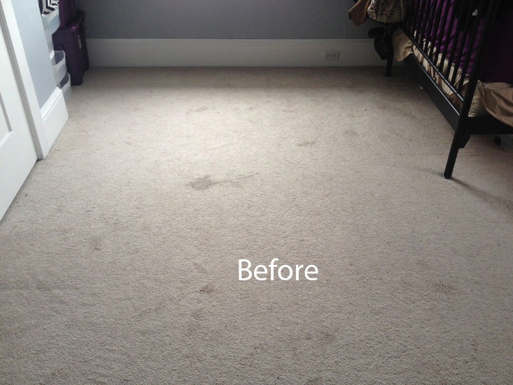 Carpet cleaning novato 415 231 2110 for Wall to wall carpeting
