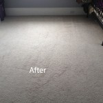 Bedroom-Wall-to-Wall-Carpet-Cleaning-Novato-B