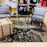 Chair-Upholstery-Cleaning-Novato
