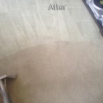 Novato-Carpet-Cleaning-Company