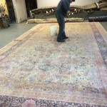 Novato-Professional-Rug-Cleaning