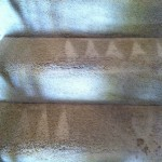 Novato-Stairs-Carpet-Cleaning