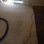Novato-Traffic-Area-carpet-cleaners
