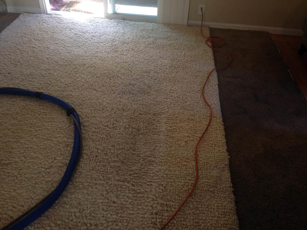 Carpet Cleaning Novato 415 231 2110