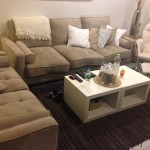 Salon-Upholstery-Cleaning-Novato