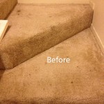 Stairs-Carpet-Cleaning-Novato-A