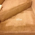Stairs-Carpet-Cleaning-Novato-B
